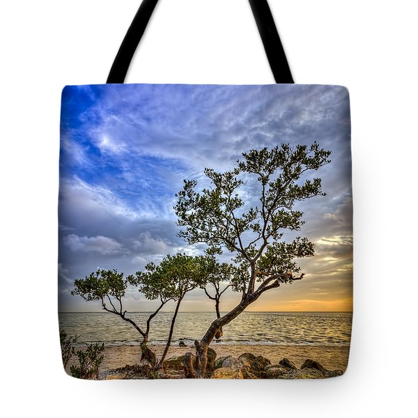 No Stress Today Tote Bag