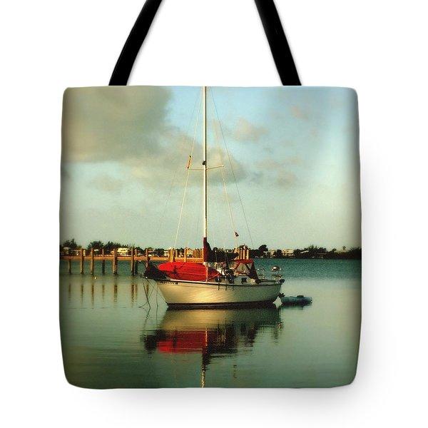 Noah's Jubilee Tote Bag by Karen Wiles