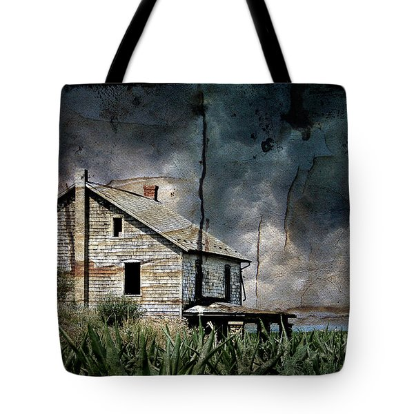 Nobody's Home Tote Bag by Lois Bryan