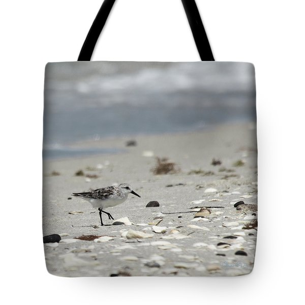 Nokomis Beach Piper Tote Bag by Susan Molnar