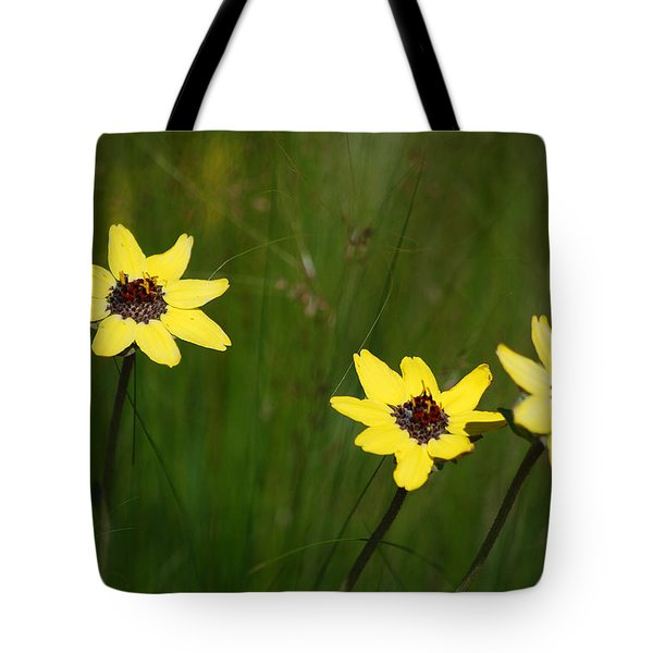 #nokxl Tote Bag by Becky Furgason