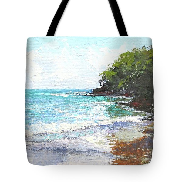 Tote Bag featuring the painting Noosa Heads Main Beach Queensland Australia by Chris Hobel