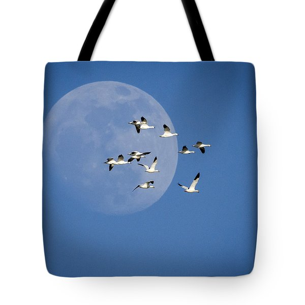Tote Bag featuring the photograph North Bound by Jack Bell