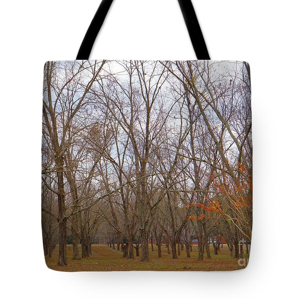 North Florida Orchard In Fall Tote Bag