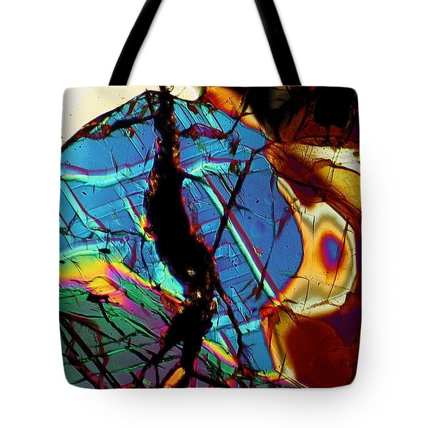 Rock Tortoise Tote Bag