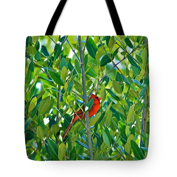 Tote Bag featuring the photograph Northern Cardinal Hiding Among Green Leaves by Cyril Maza