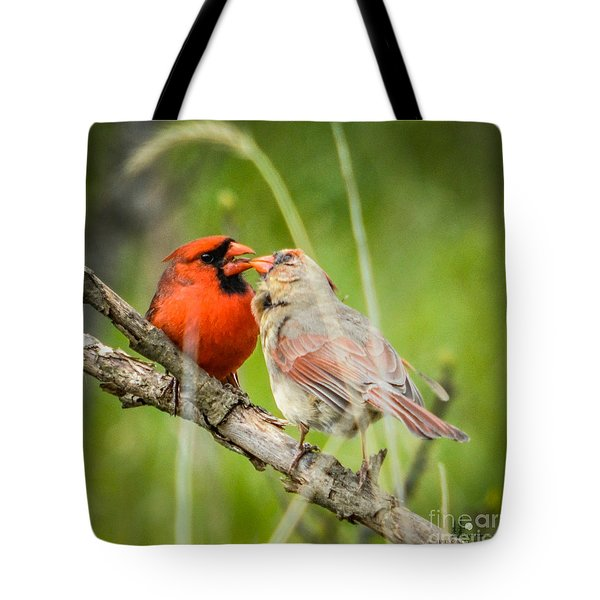 Northern Cardinal Male And Female Tote Bag