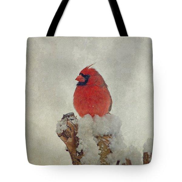 Northern Cardinal Tote Bag by Sandy Keeton