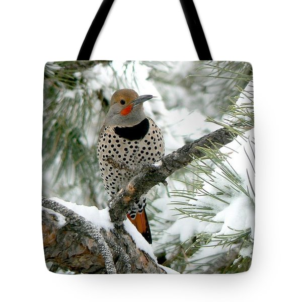Northern Flicker On Snowy Pine Tote Bag