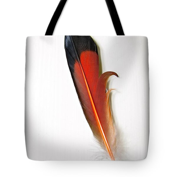 Northern Flicker Tail Feather Tote Bag by Sean Griffin