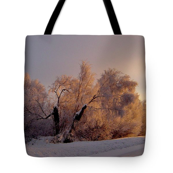 Tote Bag featuring the photograph Northern Light by Jeremy Rhoades