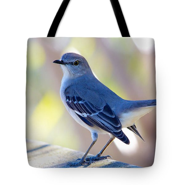 Tote Bag featuring the photograph Northern Mockingbird - Moqueur Polyglotte - Mimus Polyglottos by Nature and Wildlife Photography