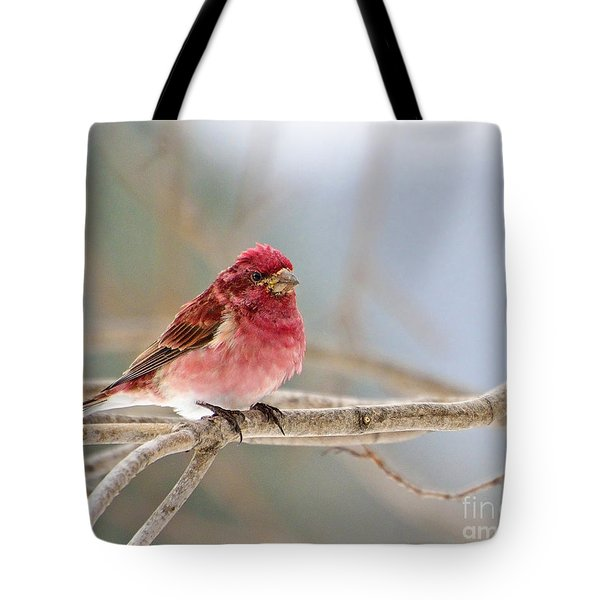Northern Pretty Tote Bag