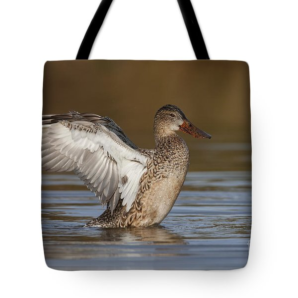 Northern Shoveler Hen Wing Flap Tote Bag by Bryan Keil