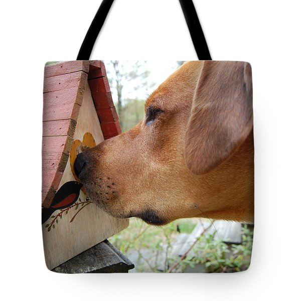 Tote Bag featuring the photograph Nosey by Mim White