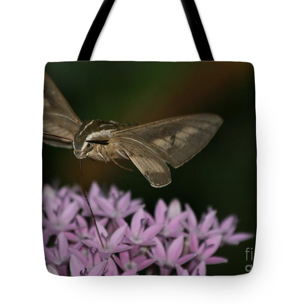Not A Hummer Tote Bag by Marty Fancy