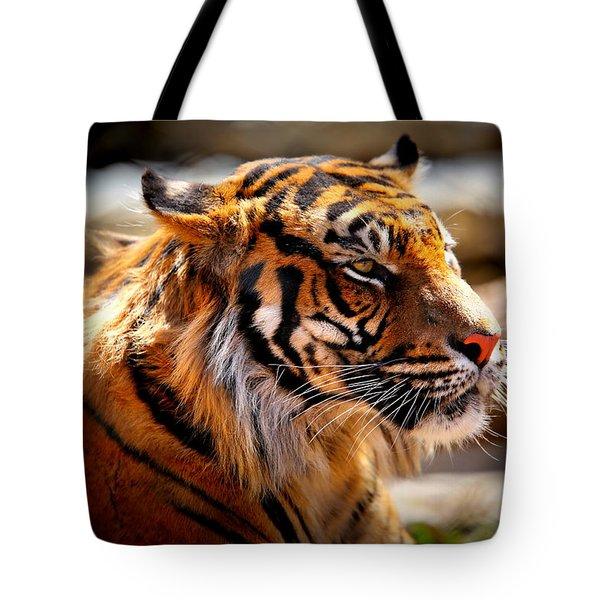 Not A Tigger Tote Bag