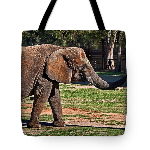 Not Snack There Tote Bag by Miroslava Jurcik
