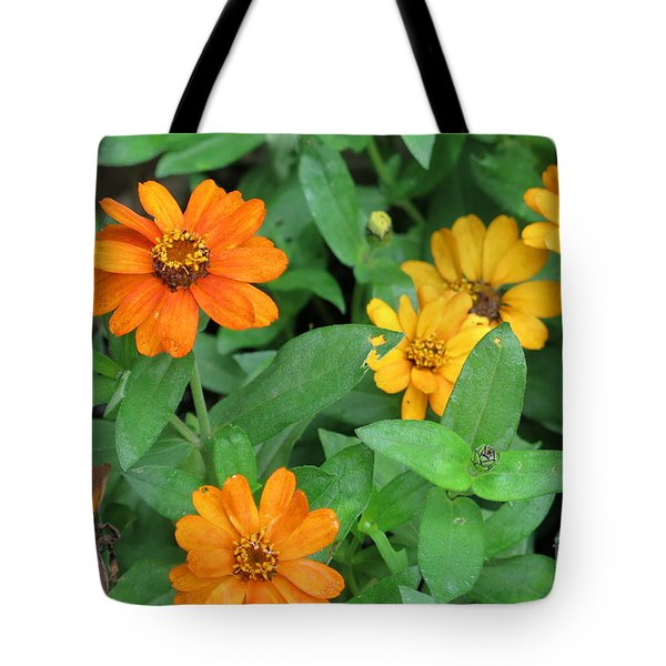 Nothing's Perfect Tote Bag