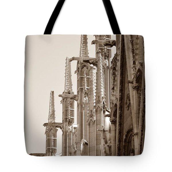 Notre Dame Sentries Sepia Tote Bag