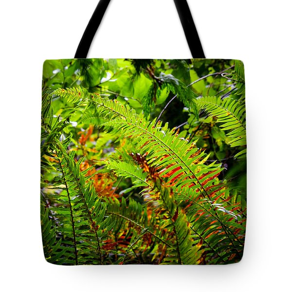 Tote Bag featuring the photograph November Ferns by Adria Trail