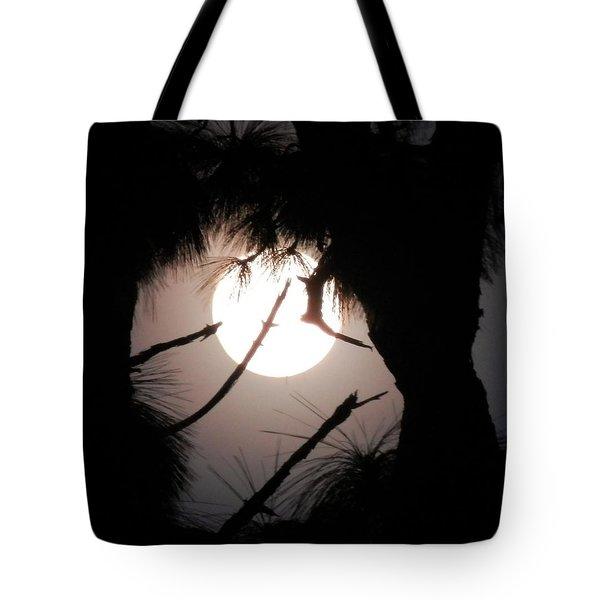 Florida November Full Moon Tote Bag by Belinda Lee