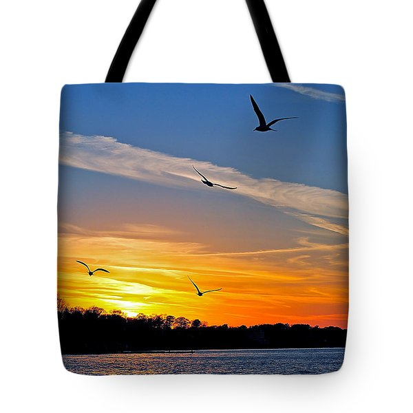 November Sunset Ia Tote Bag by Frozen in Time Fine Art Photography