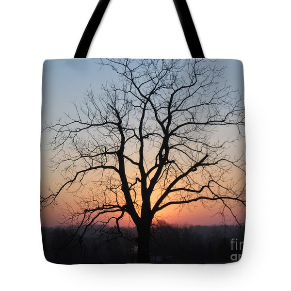 November Walnut Tree At Sunrise Tote Bag