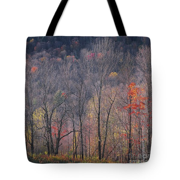 November Woods Tote Bag