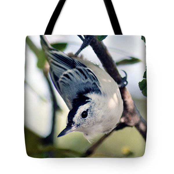 Nuthatch 623 Tote Bag