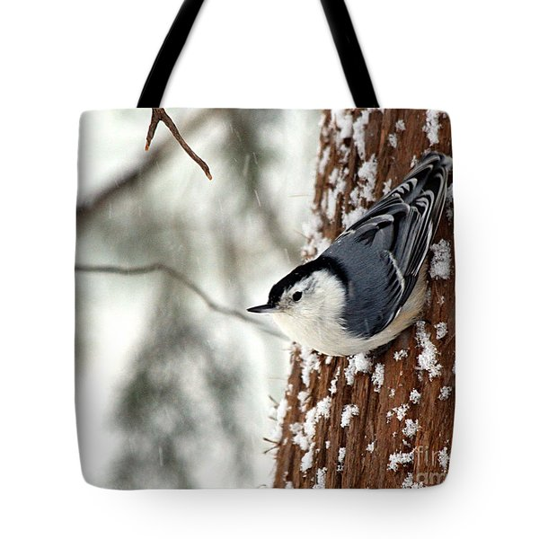 Nuthatch In Snow Storm Tote Bag by Paula Guttilla