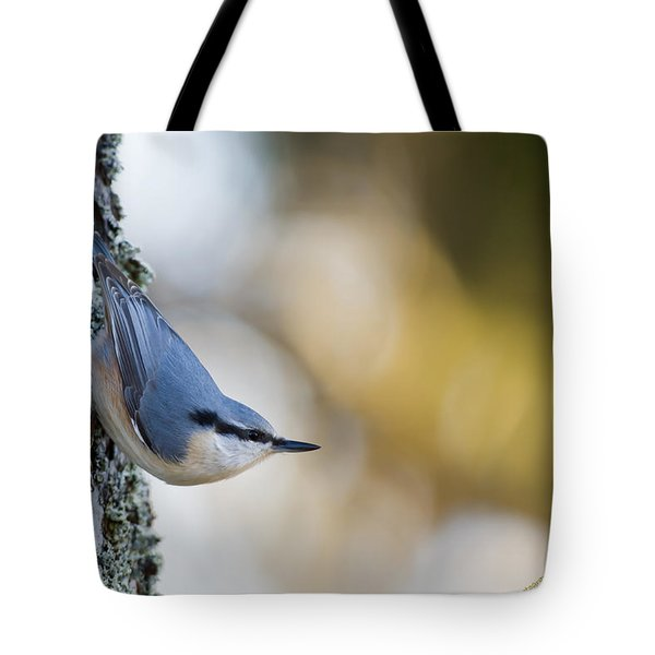 Nuthatch In The Classical Position Tote Bag