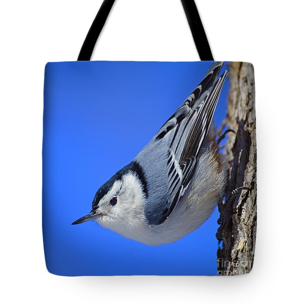 Nuthatch Tote Bag