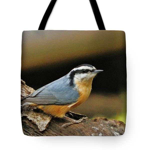 Tote Bag featuring the photograph Nuthatch Pose by VLee Watson
