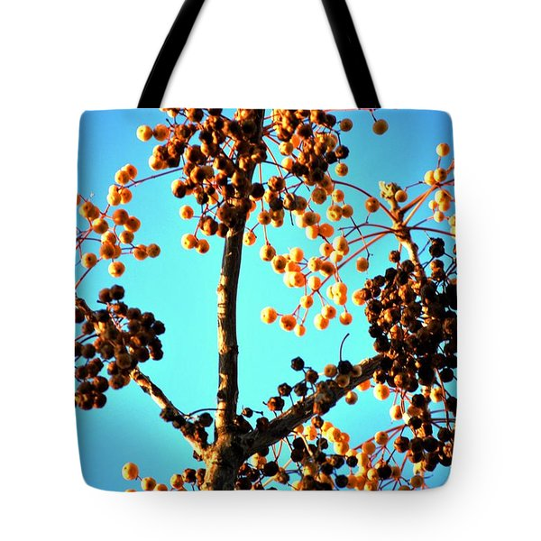 Tote Bag featuring the photograph Nuts And Berries by Matt Harang
