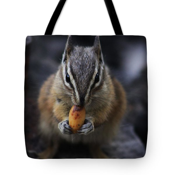 Nuts Tote Bag by Alyce Taylor