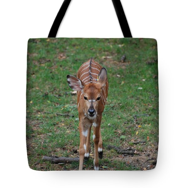 Nyala Tote Bag by DejaVu Designs