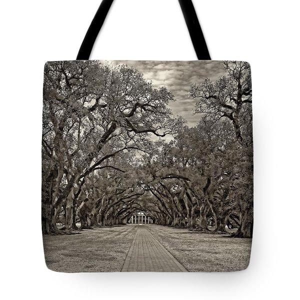 Oak Alley 3 Sepia Tote Bag by Steve Harrington
