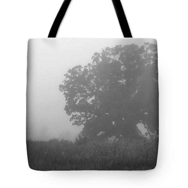 Oak In The Fog Tote Bag
