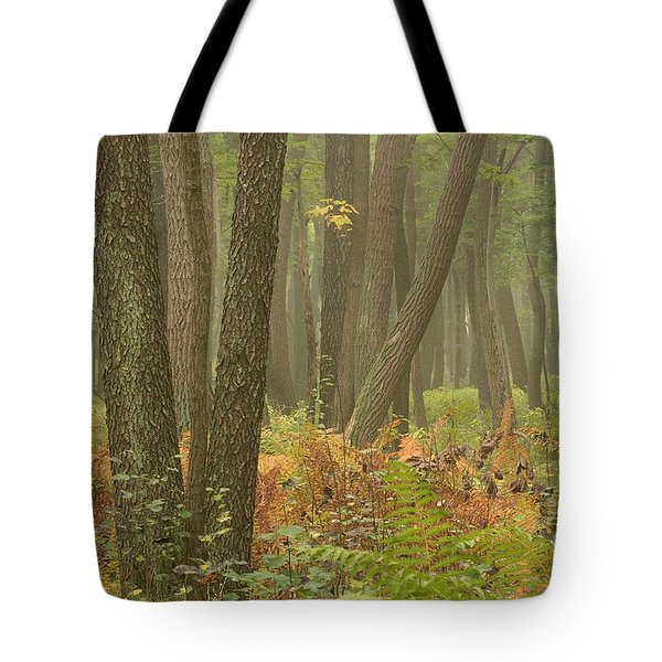 Oak Openings Fog Forest Tote Bag