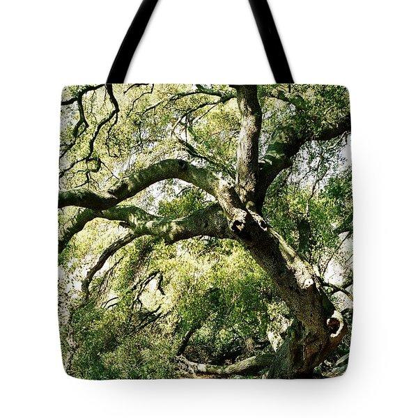 Oak Spirit Tote Bag by Kathy Bassett