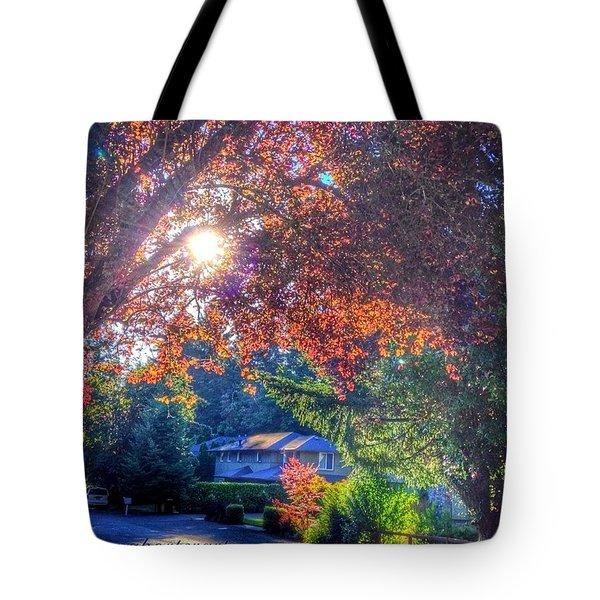 Oak Street Early Evening Light Tote Bag