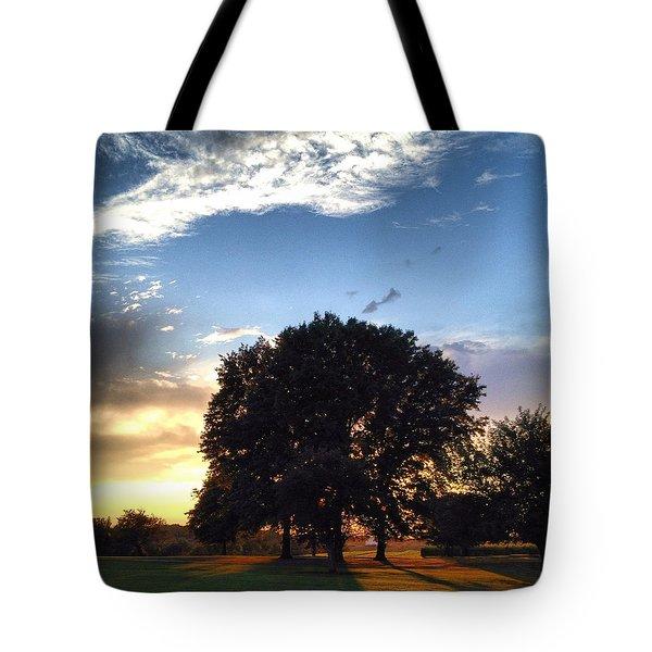 Oak Tree At The Magic Hour Tote Bag