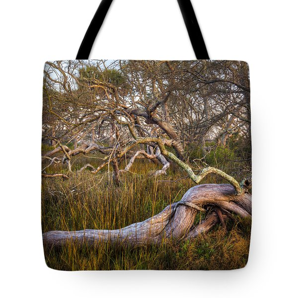Oak Trees In The Marsh Tote Bag by Debra and Dave Vanderlaan