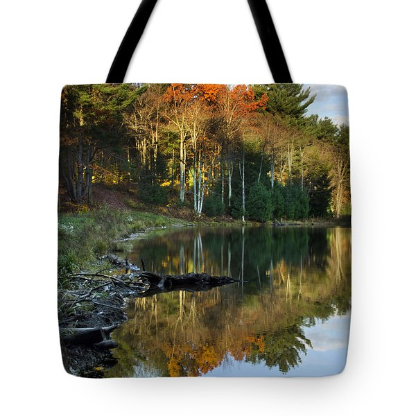 Tote Bag featuring the photograph Oakley Corners State Forest by Christina Rollo
