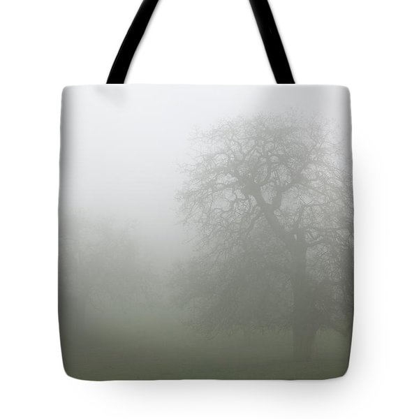 Tote Bag featuring the photograph Oaks In Fog - Central California by Ram Vasudev