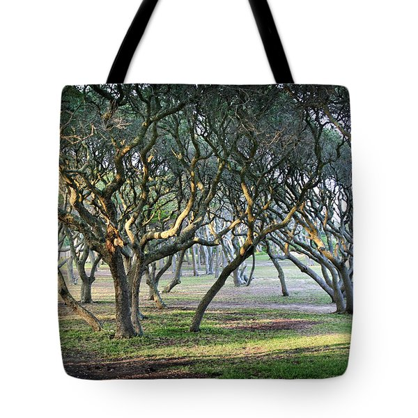 Oaks Of Fort Fisher Tote Bag