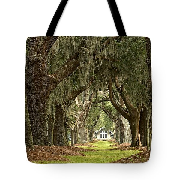 Oaks Of The Golden Isles Tote Bag