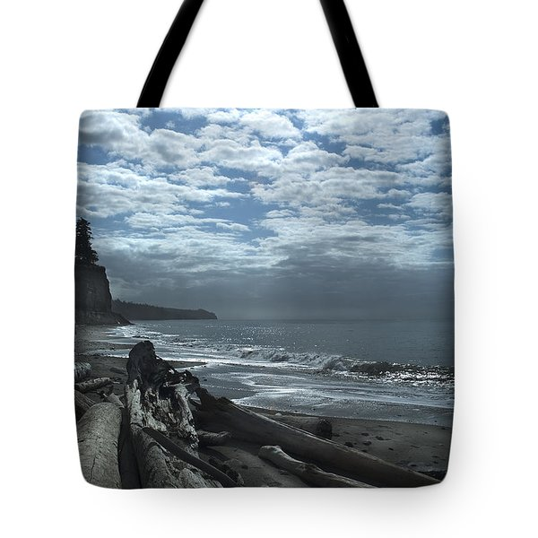 Ocean Beach Pacific Northwest Tote Bag by Yulia Kazansky