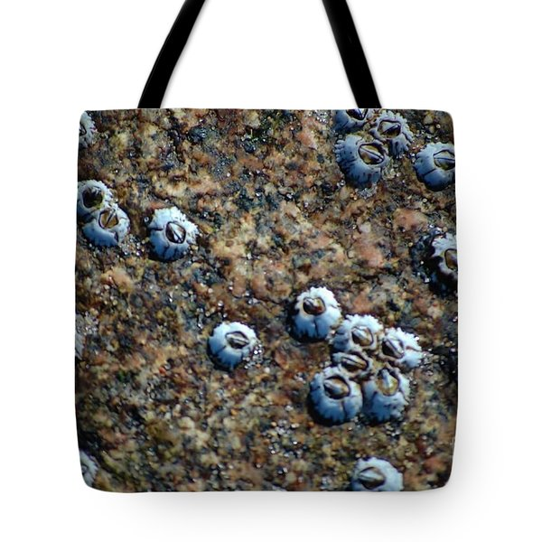 Tote Bag featuring the photograph Ocean's Quilt by Christiane Hellner-OBrien